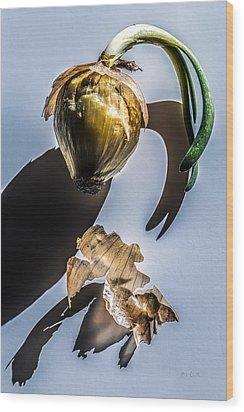 Onion Skin And Shadow Wood Print by Bob Orsillo