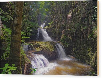 Wood Print featuring the photograph Onomea Falls by Jim Thompson