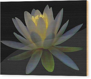 Opal Lotus Swish Wood Print by Debra     Vatalaro