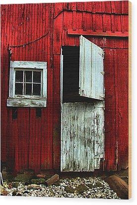 Open Barn Door Wood Print by Julie Dant