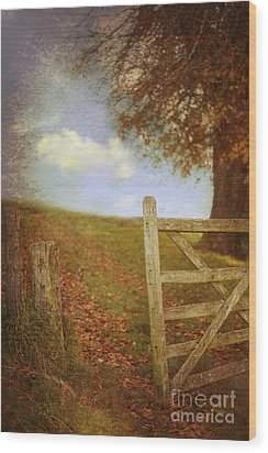 Open Country Gate Wood Print by Amanda Elwell