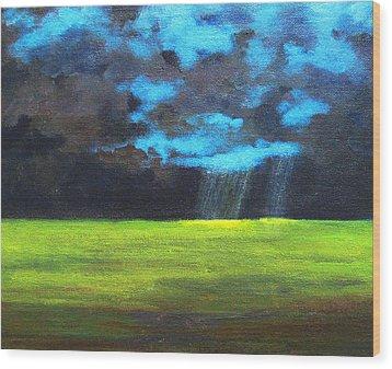 Open Field IIi Wood Print by Patricia Awapara