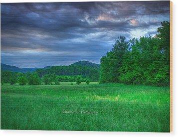 Open Pasture Wood Print by Paul Herrmann