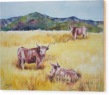 Open Range Patagonia Wood Print by Summer Celeste