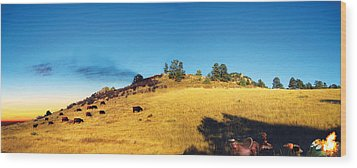 Open Range Wood Print by Ric Soulen
