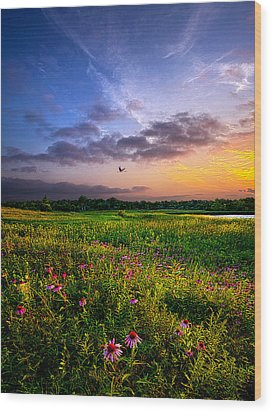 Open Spaces Wood Print by Phil Koch
