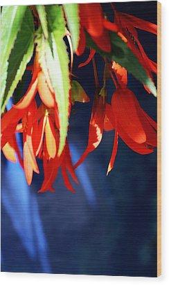 Orange And Blue Wood Print by Jp Grace