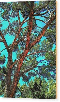 Orange And Turquoise  Wood Print by Jodie Marie Anne Richardson Traugott          aka jm-ART
