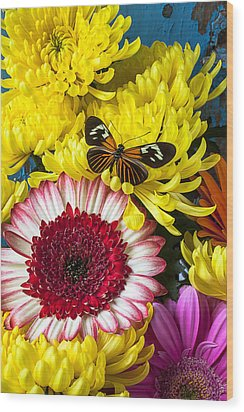 Orange Black Butterfly With Red Mum Wood Print by Garry Gay