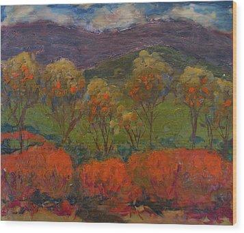Orange Bushes Wood Print