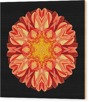 Orange Dahlia Flower Mandala Wood Print