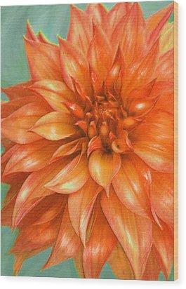 Orange Dahlia Wood Print by Jane Schnetlage