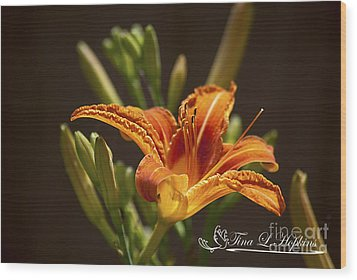 Orange Day Lily 20120615_21a Wood Print