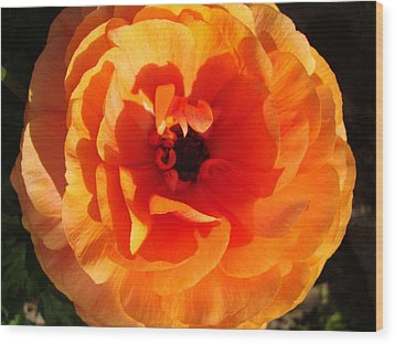 Orange Floral Wood Print by Tamara Bettencourt