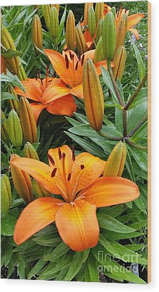 Wood Print featuring the photograph Orange Flowers by Rose Wang