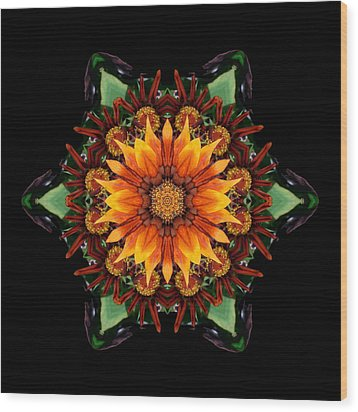 Orange Gazania IIi Flower Mandala Wood Print