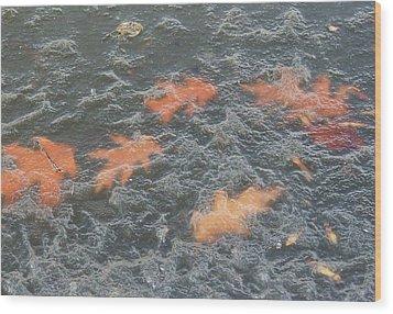 Orange Ice Wood Print by Todd Sherlock