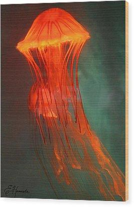Orange Jellies Wood Print