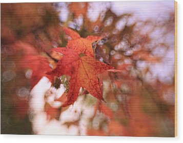 Orange Leaves Wood Print