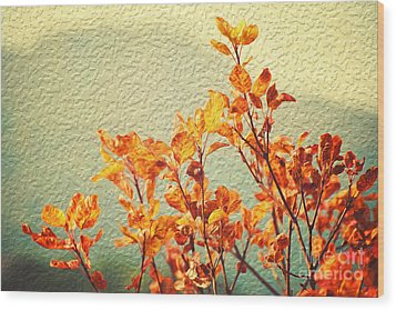 Wood Print featuring the photograph Orange Leaves by Yew Kwang