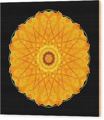 Wood Print featuring the photograph Orange Nasturtium Flower Mandala by David J Bookbinder