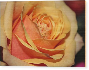 Wood Print featuring the photograph Orange Passion by Judy Palkimas