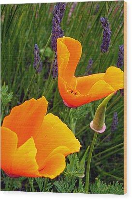 Orange Poppies With Lavender Wood Print
