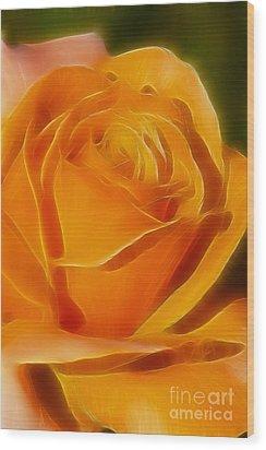 Orange Rose 6291-fractal Wood Print by Gary Gingrich Galleries
