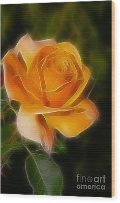 Orange Rose 6292-fractal Wood Print by Gary Gingrich Galleries