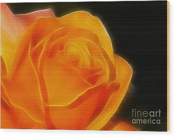 Orange Rose 6308 Wood Print by Gary Gingrich Galleries