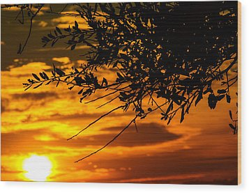 Orange Sunset Wood Print