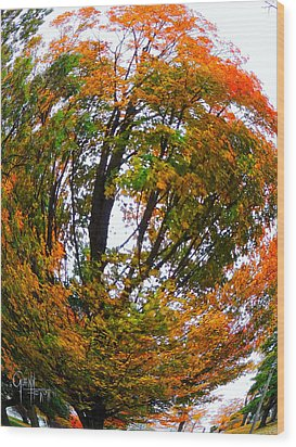 Orange Tree Swirl Wood Print