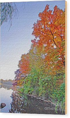 Orange Trees Wood Print by Nur Roy