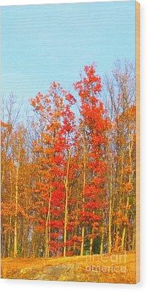 Orange Trees.  Wood Print by Rose Wang