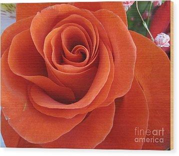 Orange Twist Rose 2 Wood Print