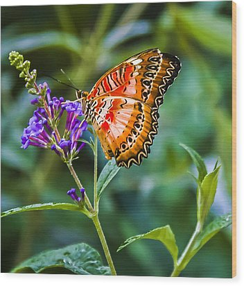 Orange White And Black Stripes On Purple Wood Print by Karen Stephenson