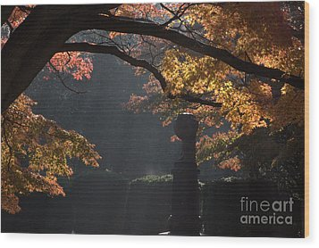 Wood Print featuring the photograph Orangish by Steven Macanka