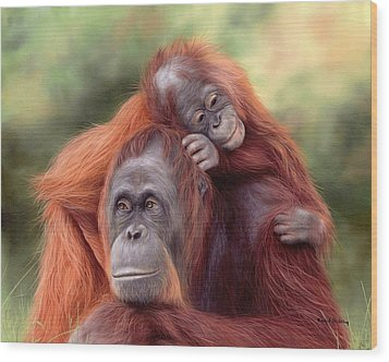 Orangutans Painting Wood Print by Rachel Stribbling
