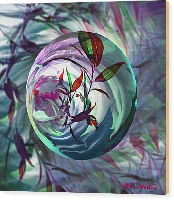 Orbiting Cranberry Dreams Wood Print by Robin Moline
