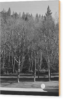 Wood Print featuring the photograph Orbitus Minimus by Marie Neder