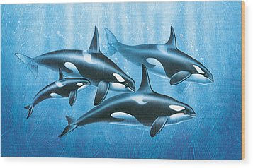 Orca Group Wood Print by JQ Licensing