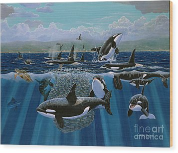 Orca Play Re009 Wood Print by Carey Chen