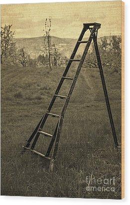 Orchard Ladder Wood Print by Edward Fielding