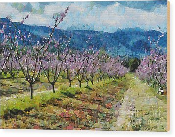 Orchard Views Wood Print by Fran Woods