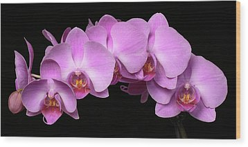 Wood Print featuring the photograph Orchid Arch by Harold Rau
