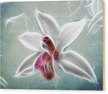 Orchid Blues Wood Print by Fiona Messenger