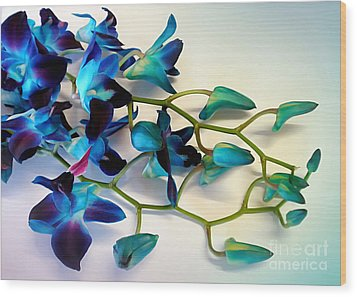 Orchid Bouquet Wood Print by Kaye Menner