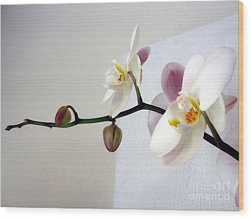 Orchid Coming Out Of Painting Wood Print by Barbara Yearty