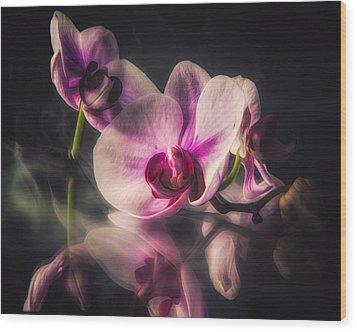 Orchid Dreams Wood Print