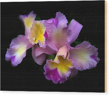 Orchid Embrace Wood Print